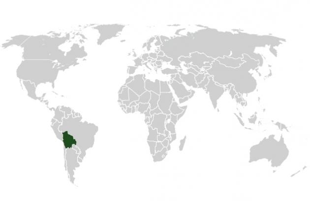 Cooperazione Bolivia: Cochabamba - Ignacio (CONCLUSO)